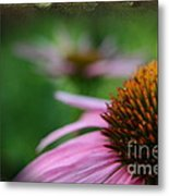 Remembering Renees Garden Metal Print by The Stone Age