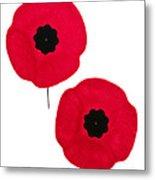 Remembrance Day Poppies Metal Print