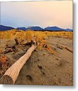 Remote New Zealand Beach Metal Print