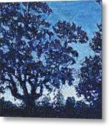 Rensing Tree Metal Print