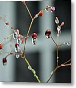 Repeated Reflections Metal Print