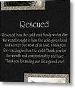 Rescued Metal Print by Andee Design