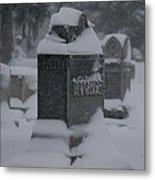 Rest In Winter Peace Metal Print