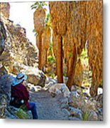 Rest Stop In Andreas Canyon Trail In Indian Canyons-ca Metal Print
