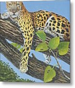 Resting After Lunch Metal Print
