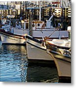 Resting By The Sea  Metal Print