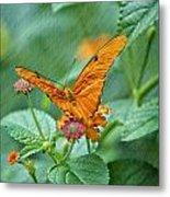 Resting Orange Butterfly Metal Print