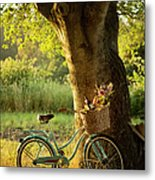 Retro Bicycle With Red Wine In Picnic Metal Print