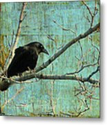 Retro Blue - Crow Metal Print