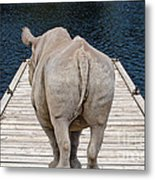 Rhino On The Dock Metal Print