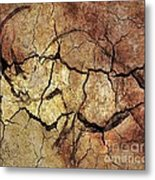 Rhinoceros From Chauve Cave Metal Print