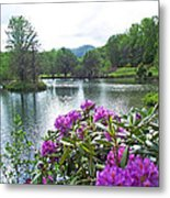 Rhododendron Blossoms And Mountain Pond Metal Print