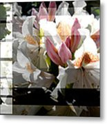 Rhododendron Collage Metal Print