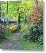 Rhododendron Path In Evening Light Metal Print