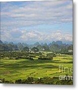 Rice Farming In China Metal Print
