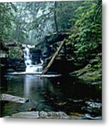 Ricketts Glen Falls 016 Metal Print