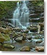 Ricketts Glen Waterfall Canyon Metal Print