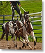 Ride Them Cowboy Metal Print