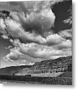 Ridges Black And White Metal Print