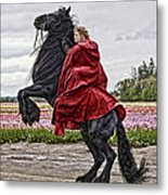 Riding High Metal Print