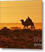 Riding Into The Sunset Metal Print