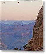 Riding The Air Currents Of The Grand Canyon Metal Print