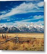 Riding The Fence Metal Print