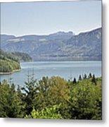 Riffe Lake Metal Print