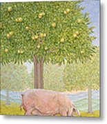 Right Hand Orchard Pig Metal Print