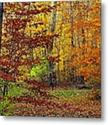 Right Place Right Time Metal Print