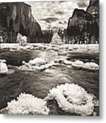 Rime Ice On The Merced In Black And White Metal Print