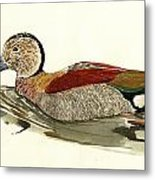 Ringed Teal Metal Print