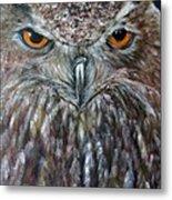 Rings Of Fire, Owl Metal Print