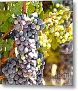 Ripe Grapes Metal Print