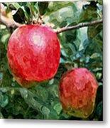 Ripe Red Apples On Tree Metal Print