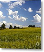 Green Belt Land 2 Metal Print