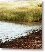 Rippled Water Rippled Reeds Metal Print