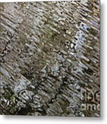 Ripples In The Swamp Metal Print