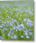 Rising Above The Rest Metal Print