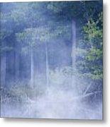 Rising Mist Metal Print