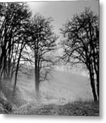 Rising Mists In The Bald Hills Metal Print