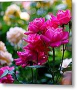 Rittenhouse Square Roses Metal Print