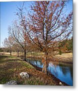 River And Winter Trees Metal Print