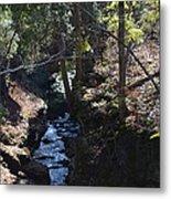 River Beneath The Trees Metal Print