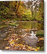 River Blyth In Autumn Vertical Metal Print