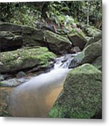 River Flow Metal Print by Steve Caldwell