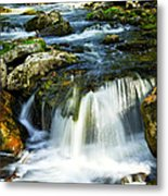 River Flowing Through Woods Metal Print