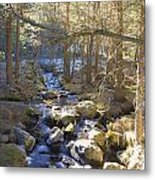 River From The Bridge Metal Print