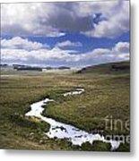 River In A Landscape Metal Print