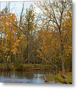 River In Autumn Metal Print by Rhonda Humphreys